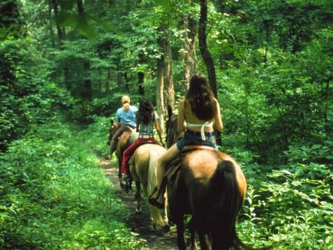 Passeggiata a cavallo - 45 min & soggiorno 2 notti